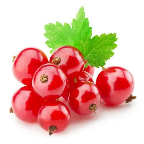 Ribes rosso Chicche di Natura